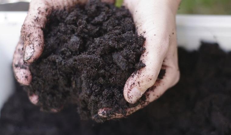 huerto ecológico en casa preparar suelo