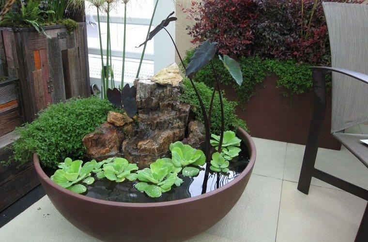 jardín acuático para interiores