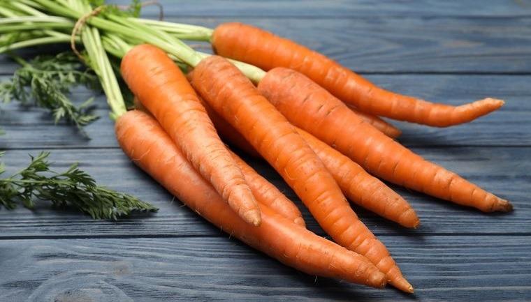 conservar zanahorias adecuadamente