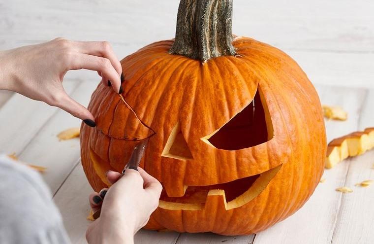 decoración de halloween elegir calabaza para tallar