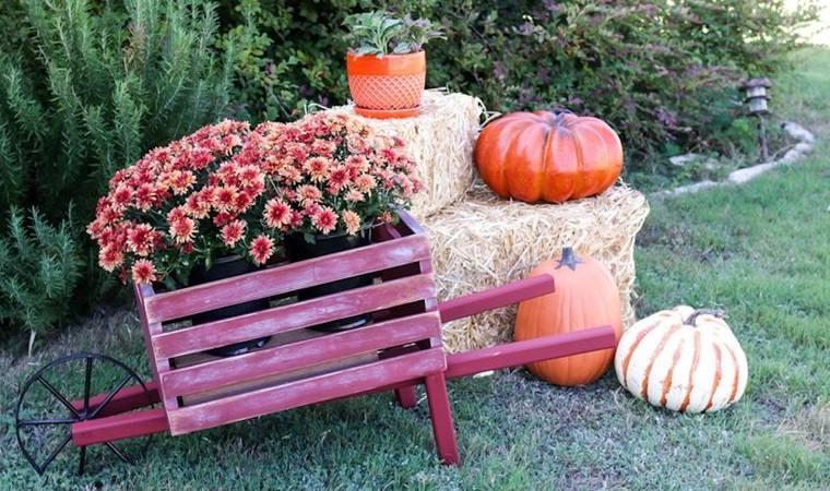 decoración otoño en jardin